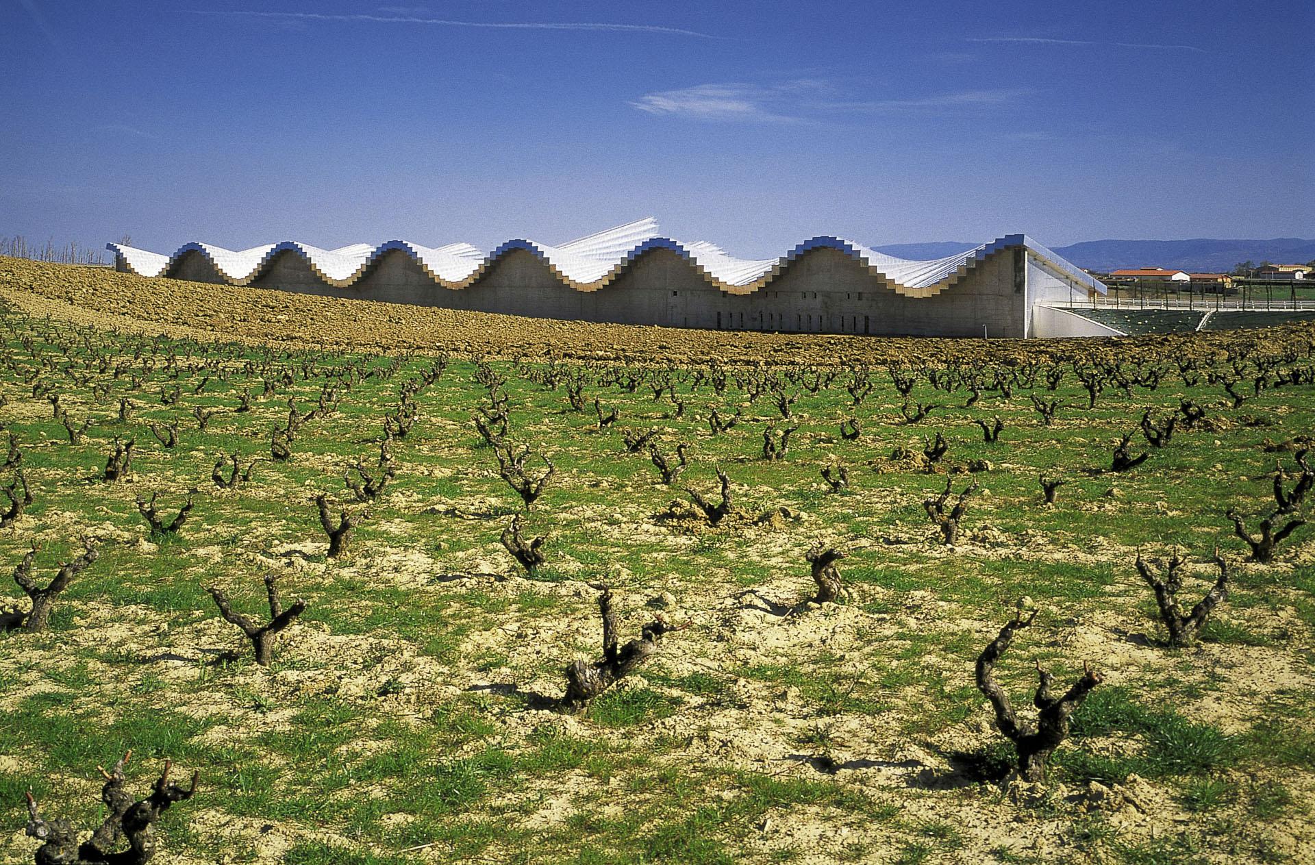 Bodegas Ysios Winery Laguardia Gallery Santiago Calatrava